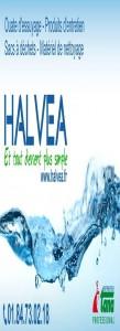 Halvea